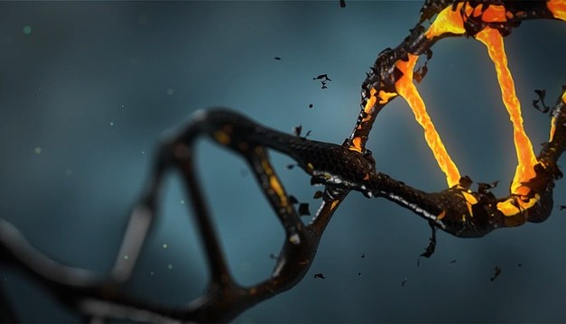 Student injects 'Bible DNA' into own body